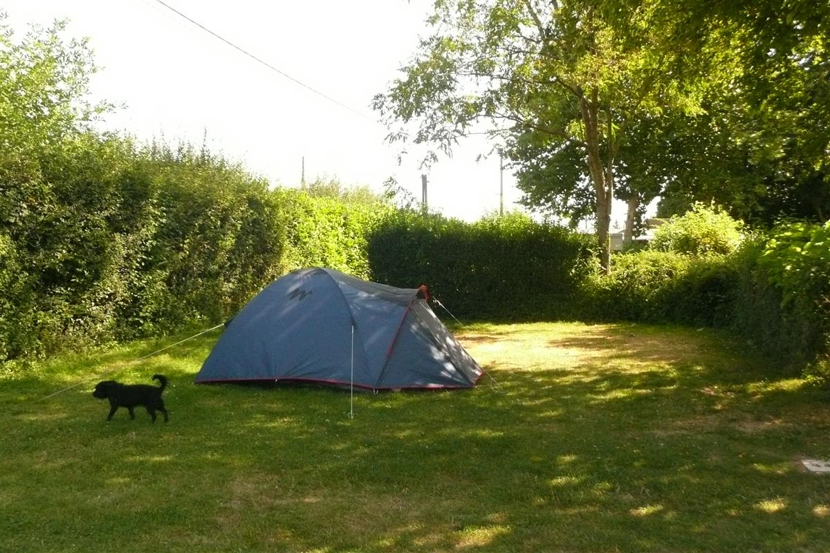Phototh que camping le jardin botanique for Camping le jardin